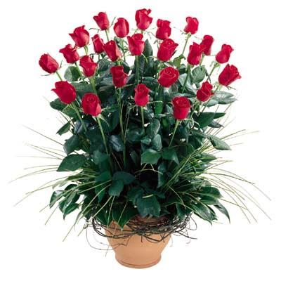 Erzincan çiçek , çiçekçi , çiçekçilik  10 adet kirmizi gül cam yada mika vazo