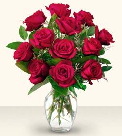 Erzincan anneler günü çiçek yolla  10 adet gül cam yada mika vazo da