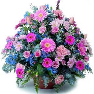 karisik mevsim kir çiçekleri  Erzincan 14 şubat sevgililer günü çiçek