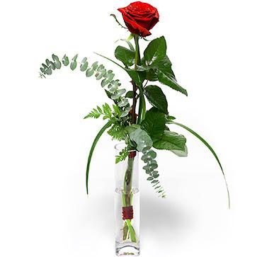 Erzincan ucuz çiçek gönder  Sana deger veriyorum bir adet gül cam yada mika vazoda
