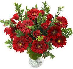 5 adet kirmizi gül 5 adet gerbera aranjmani  Erzincan güvenli kaliteli hızlı çiçek