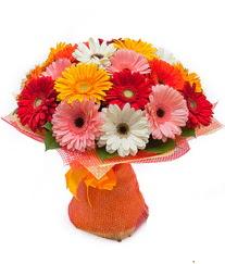 Renkli gerbera buketi  Erzincan hediye çiçek yolla