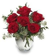 Vazo içerisinde 5 adet kırmızı gül  Erzincan yurtiçi ve yurtdışı çiçek siparişi