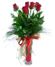 vazo içerisinde 5 kırmızı gül  Erzincan çiçek siparişi vermek