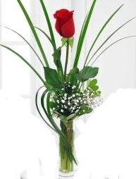 Cam içerisinde 1 kırmızı gül  Erzincan 14 şubat sevgililer günü çiçek