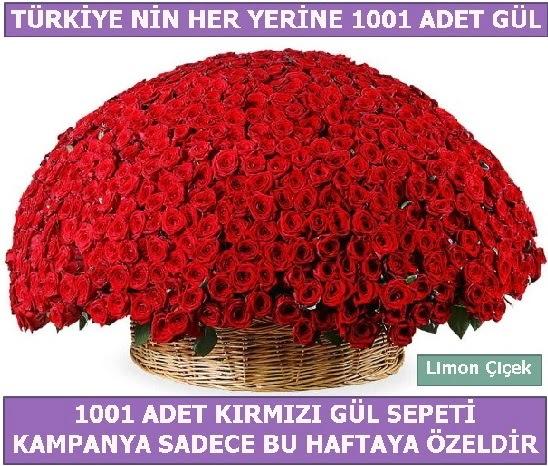 1001 Adet kırmızı gül Bu haftaya özel  Erzincan uluslararası çiçek gönderme
