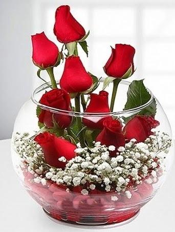 Kırmızı Mutluluk fanusta 9 kırmızı gül  Erzincan online çiçekçi , çiçek siparişi