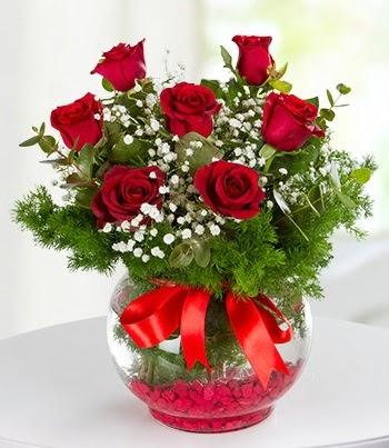 fanus Vazoda 7 Gül  Erzincan çiçek mağazası , çiçekçi adresleri