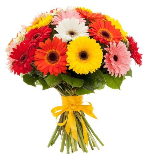 Gerbera demeti buketi  Erzincan çiçek servisi , çiçekçi adresleri
