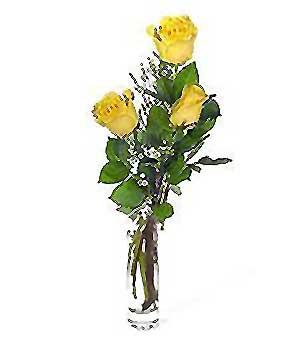 Erzincan çiçek gönderme sitemiz güvenlidir  3 adet kalite cam yada mika vazo gül