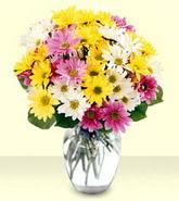 Erzincan çiçek gönderme sitemiz güvenlidir  mevsim çiçekleri mika yada cam vazo