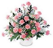 Erzincan çiçek yolla  Karanfillerden özel aranjman sepet içinde