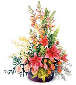 Erzincan İnternetten çiçek siparişi  Mevsim çiçekleri sepeti