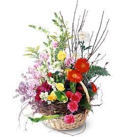 Erzincan çiçek gönderme  Mevsim çiçekleri sepeti