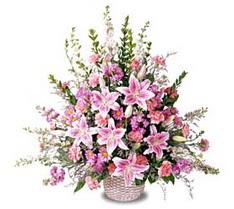 Erzincan online çiçekçi , çiçek siparişi  Tanzim mevsim çiçeklerinden çiçek modeli