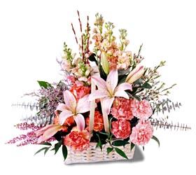 Erzincan online çiçekçi , çiçek siparişi  mevsim çiçekleri sepeti özel tanzim