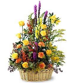 Erzincan İnternetten çiçek siparişi  mevsim çiçekleri sepeti özel