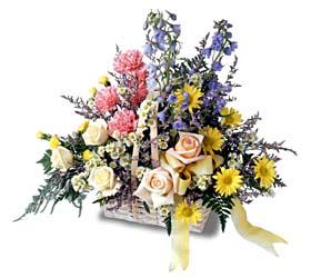 Erzincan İnternetten çiçek siparişi  mevsim çiçeklerinden özel
