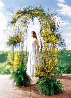 Erzincan çiçek yolla , çiçek gönder , çiçekçi   güller ve mevsim çiçegi