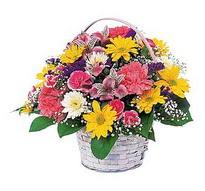 Erzincan çiçek mağazası , çiçekçi adresleri  mevsim çiçekleri sepeti özel