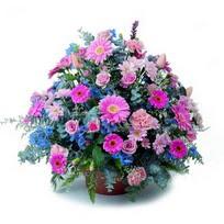 Erzincan internetten çiçek satışı  mevsim çiçekleri sepeti çiçek yolla için önerilir