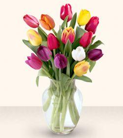 Erzincan İnternetten çiçek siparişi  13 adet cam yada mika vazoda laleler