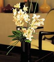 Erzincan İnternetten çiçek siparişi  cam yada mika vazo içerisinde dal orkide