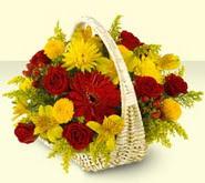 Erzincan ucuz çiçek gönder  sepette mevsim çiçekleri