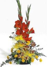 Erzincan çiçekçi mağazası  glayör ve mevsim çiçekleri