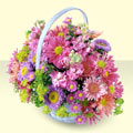 Erzincan online çiçek gönderme sipariş  bir sepet dolusu kir çiçegi  Erzincan 14 şubat sevgililer günü çiçek
