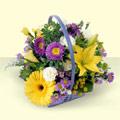 Erzincan cicek , cicekci  sepette kir çiçeklerinden  Erzincan anneler günü çiçek yolla