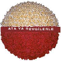 arma anitkabire - mozele için  Erzincan 14 şubat sevgililer günü çiçek