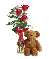 oyuncak ve güller tanzim   Erzincan çiçek online çiçek siparişi