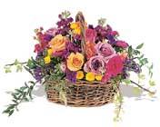 sepette karisik haldeler   Erzincan güvenli kaliteli hızlı çiçek