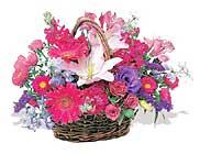 küçük karisik özel sepet   Erzincan çiçek siparişi sitesi
