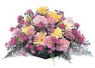 Erzincan 14 şubat sevgililer günü çiçek  karisik sepet tanzimi bahar