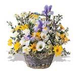 Erzincan internetten çiçek satışı  karisik karma kir çiçegi sepeti