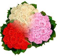 3 renkte gül seven sever   Erzincan çiçek mağazası , çiçekçi adresleri