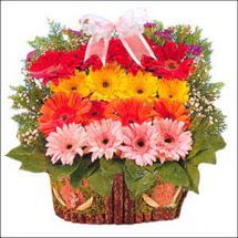 ahsap sepette gerberalar   Erzincan yurtiçi ve yurtdışı çiçek siparişi