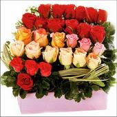 15 adet renkli gül ve cam   Erzincan yurtiçi ve yurtdışı çiçek siparişi