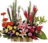 çok özel aranjman tanzimi   Erzincan 14 şubat sevgililer günü çiçek