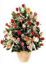 91 adet renkli gül aranjman   Erzincan 14 şubat sevgililer günü çiçek