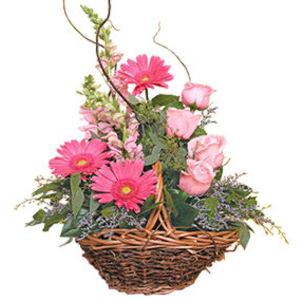 küçük ama görsel aranjman   Erzincan 14 şubat sevgililer günü çiçek