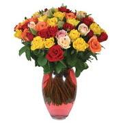 51 adet gül ve kaliteli vazo   Erzincan 14 şubat sevgililer günü çiçek