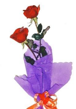 2  adet kirmizi gül buketi   Erzincan çiçek mağazası , çiçekçi adresleri