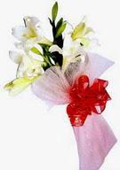Erzincan çiçek mağazası , çiçekçi adresleri  ince vazoda gerbera ve ayi