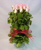 13 adet pembe gül silindirde   Erzincan anneler günü çiçek yolla