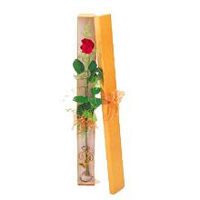 ince  kutuda  1  gül   Erzincan anneler günü çiçek yolla