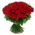 101 adet kirmizi gül sade  Erzincan anneler günü çiçek yolla