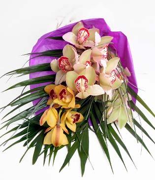 Erzincan çiçek satışı  1 adet dal orkide buket halinde sunulmakta